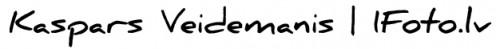 logo5-500x49 logo